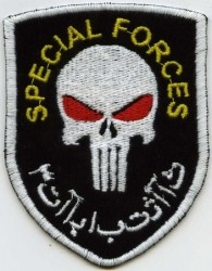 Special Forces-Patch