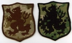 DEVGRU Gold Team-Patch