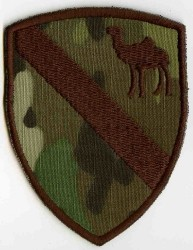 1th Cavalry Camel-Patch